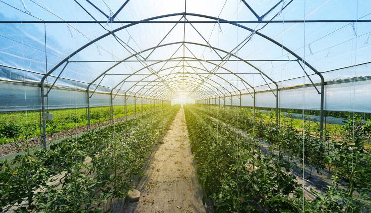 Efficienza operativa al servizio del settore agricolo